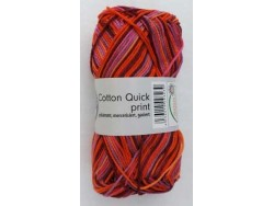 Cotton Quick Print - Bordeaux multicolor 170